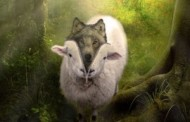 Хто стягне з вовка овечу шкуру?