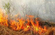 Спалювання сухої трави привело до пожеж у селах Станилі та Модричах